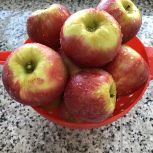 First-Apples-grown-in-Woz-Orchard